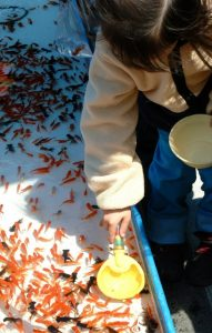 子どもの金魚すくい